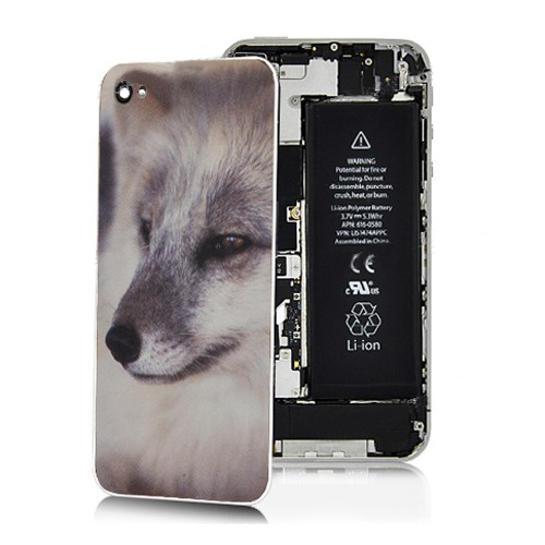 for iPhone 4S Arctic Fox Back Cover (White Bezel)
